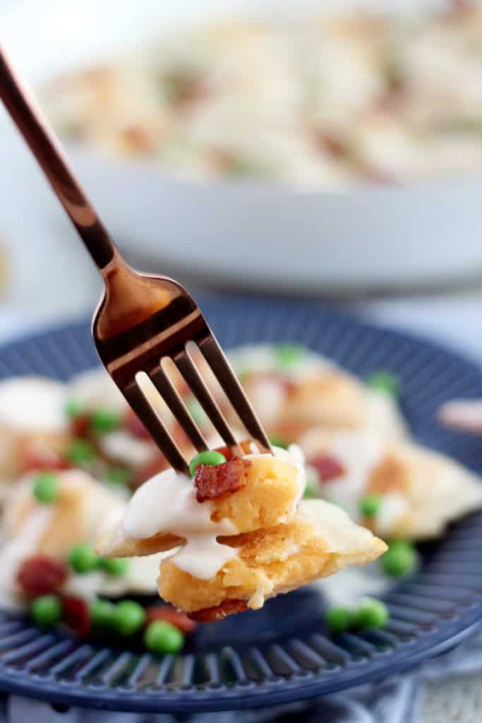 perogy with cheese